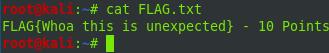 ftp-flag